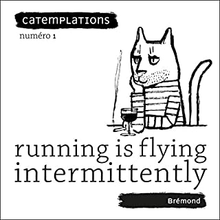Running Is Flying Intermittently (Catemplations) audiobook cover art