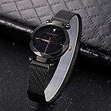 LULI 6877 Reloj de Pulsera de Cuarzo de Moda inmune para Mujer con Banda de Acero Inoxidable (Color : Negro)