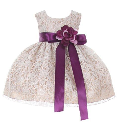 Cinderella Couture Baby-Girls Champagne Lace Dress Purple Sash & Flw 24M X 1132B