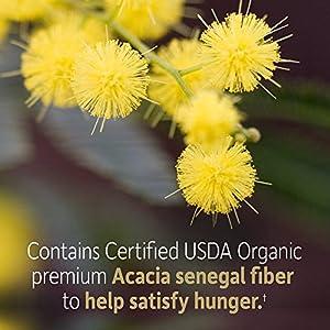 Garden of Life Dr. Formulated Organic Fiber Supplement - Unflavored, 32 Servings, Organic Prebiotic Fiber Supplement, Psyllium Free, Vegan Superfood Fiber Powder, Constipation Relief, Hunger Control