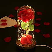 LEDMOMO Red Silk Rose and LED Light with Fallen Petals in a Glass Dome on A Wooden Base  for  Anniversary Wedding