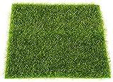 ZCYY Tappeto erboso Artificiale, Erba Artificiale 2 Pezzi Tappetino per Erba Verde Prati Artificiali tappeti erbosi Finti zolla casa Giardino Muschio per Pavimento di casa Decorazione d