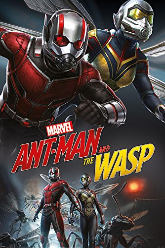 Ant-Man And The Wasp Poster Dynamic (61cm x 91,5cm)