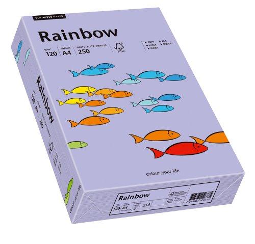 Papyrus 88042568 Druckerpapier Rainbow 120 g/m², A4 250 Blatt violett