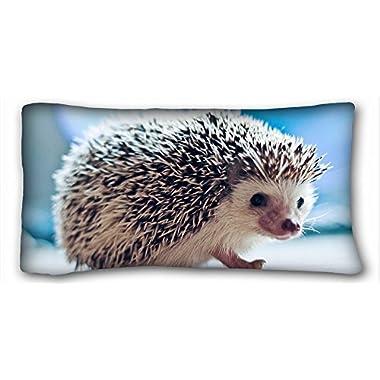 TSlook Throw Blankets Hedgehog Eyes Fleece Blanket for Couch/Sofa/Bed 40x50