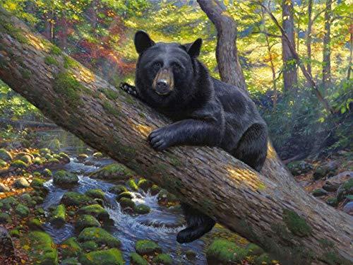 FPUYB Rompecabezas de 1000 Piezas para Adultos y niños Kidsanimal Black Bear Tree River Scenery edGame Adult Retro Scene Game Puzzle