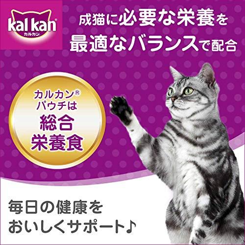 カルカンパウチ成猫用1歳からまぐろ70g×16袋入り[キャットフード]