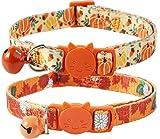 BoomBone Thanksgiving Cat Collar,Pack of 2 Kitten Collar with Bell