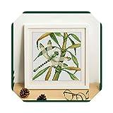 Kit de bordado |Romantic Story Conjunto de punto de cruz por kits de iniciación Principiantes Bordado Costura Pintura decorativa Hojas de bambú Conjunto de punto de cruz 1-11CT Lienzo blanco