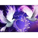 MXJSUA 5D Diamant Peinture Kits de Forage Complet Adultes Strass Collé Arts Artisanat Home Wall Decor 30x40 cm Deux Pigeons Blancs