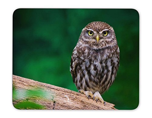 ABin Small Burrowing owl Mouse pad Mouse Pad The Office Mat Mouse Pad Gaming Mousepad Nonslip Rubber Backing