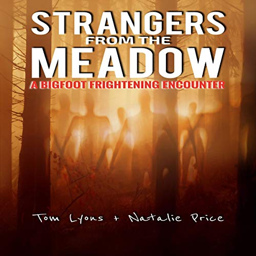 Strangers From the Meadow Audiobook By Tom Lyons,                                                                                        Natalie Price cover art