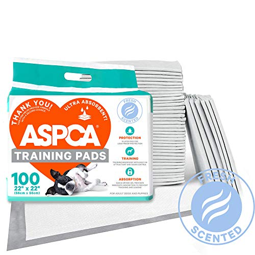 100 Count Dog Pads