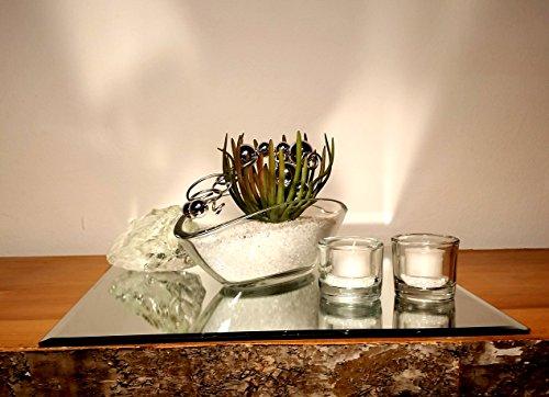 Tischgesteck Tischdekoration Nr. 2 Glasschale mit Sukkulente weissen Splitt