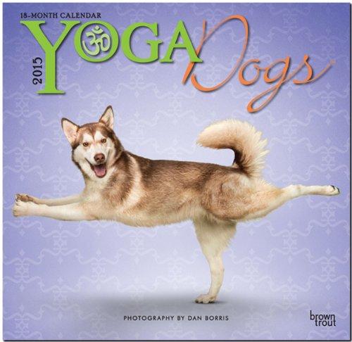Yoga Dogs 2015 - Joga-Hunde: Original BrownTrout-Kalender [Mehrsprachig] [Kalender]