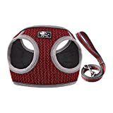 CROWATTS Puppy Harness and Leash Set-Soft Mesh Comfortable Dog Vest Harness,Adjustable Reflective Vest Harness for Small and Medium Dogs.