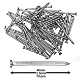 Pack of 70 Hardened Ribbed Steel Masonry Nails 2.5x40mm...