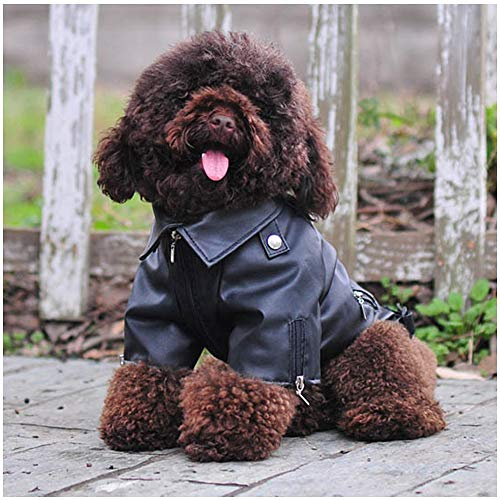 Delifur Dog Leather Jacket Pet Cool Motorcycle Clothing Waterproof Winter Coats for Small Medium Large Dogs (5XL)