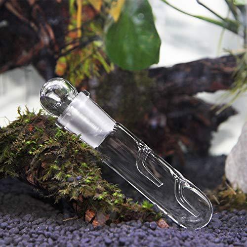 WEAVERBIRD 2 Loch Glass Planaria Trap Aquarium Schnecke Blutegel Vivarium Pest Catch Garnelen Wurm Planaria Blutegel Catcher Planarie Falle