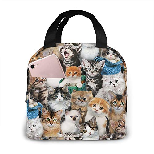 Lunch Bag Cat Breeds Packed Cats Insulated Lunch Box Tote Bag Snacks Organizer Lunch Holder for Women Men Office Work School Beach Party Boating Fishing Picnic