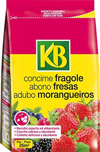 KB Concime Fragole, 800g