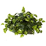 Nearly Natural 6708 15in. Pothos Ledge (Set on Foam) Silk Plant, Green