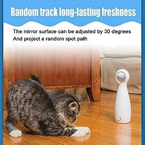 Laser cat toys for your Cat or Kitten