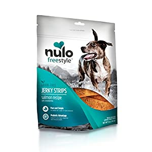 Nulo Freestyle Jerky Dog Treats: Healthy Grain Free Dog Treat – Natural Dog Treats for Training or Reward – Real Meat Jerky Strips for Puppy and Adult Dogs – Salmon with Strawberries Recipe – 5 oz Bag