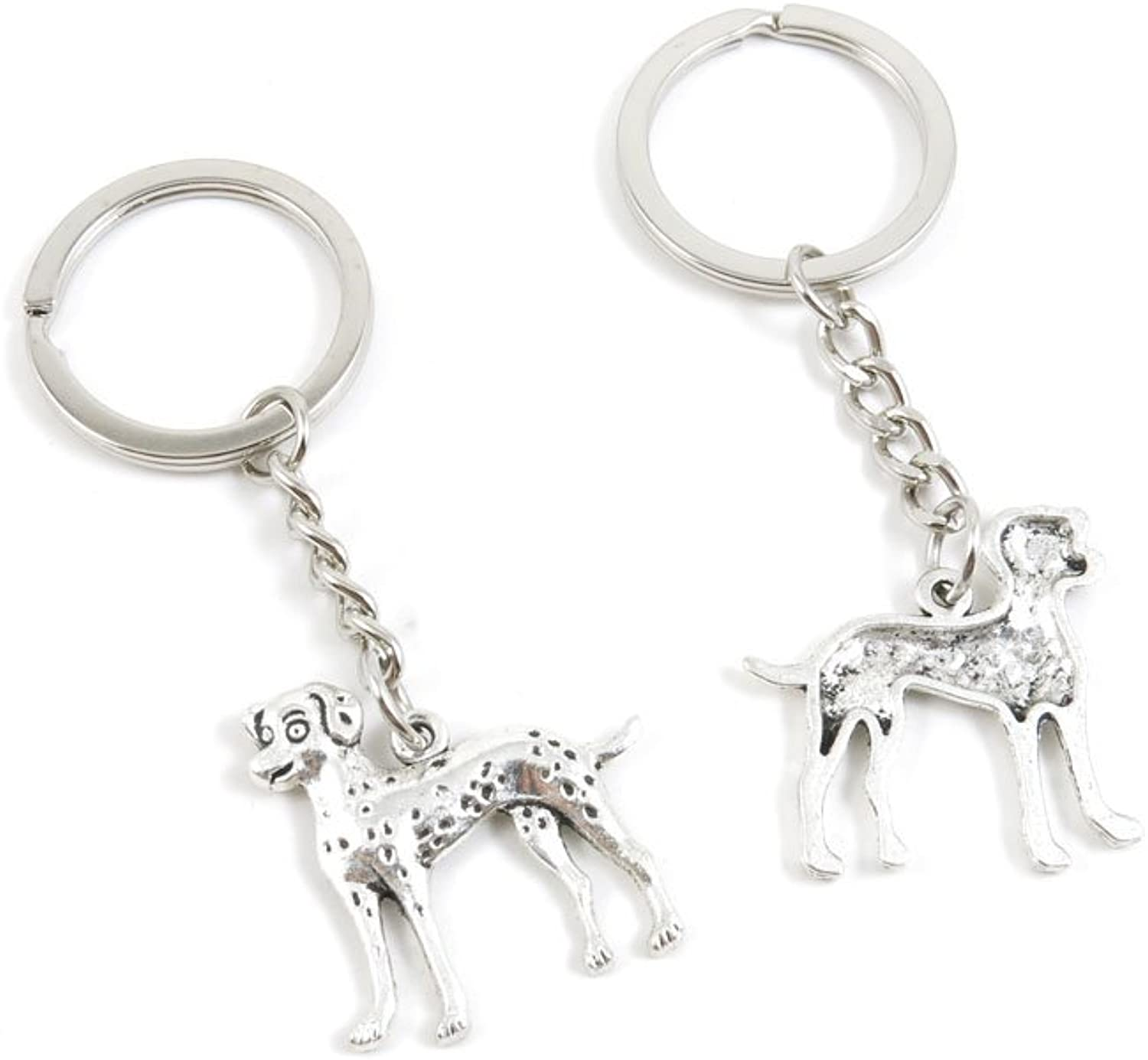 100 Pieces Keychain Keyring Door Car Key Chain Ring Tag Charms Bulk Supply Jewelry Making Clasp Findings A5BG3G Dalmatian