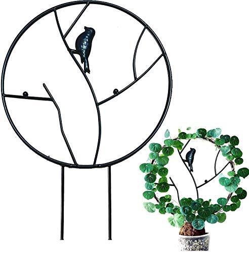 Pflanzenständer aus Metall, Klettergerüst, Blumentöpfe, Kletterpflanzen, Rankhilfe, Gestell für Pflanzenklettern (schwarzer Vogel A, 30 cm)