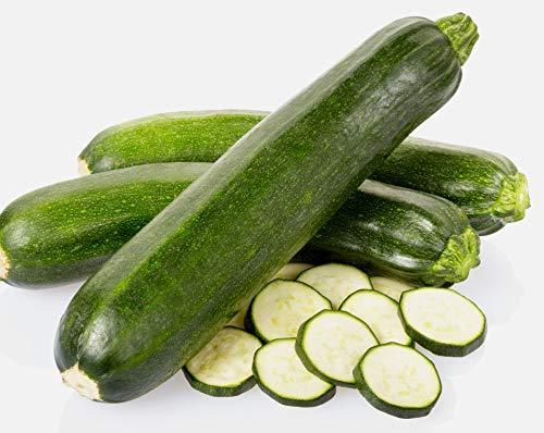 Heirloom Zucchini Seeds- Black Beauty Squash- 30+ Seeds