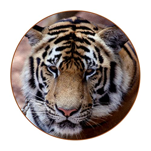 Coasters for Drinks,for Desktop Protection Cute Absorbent Coaster,Housewarming Gift for Friend and Family Asian Tiger