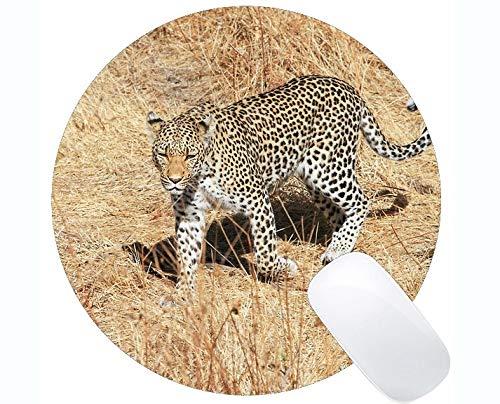 Yanteng Cojín de ratón Redondo del Juego de Goma Antideslizante, Cojines de ratón Redondos del Leopardo de la Familia del Gato del Leopardo