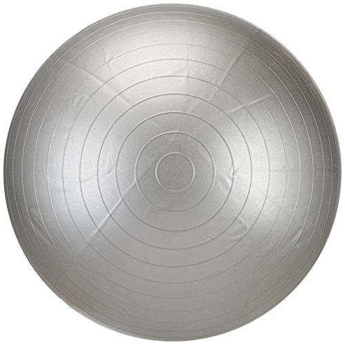 LIFEFIT Unisex Adult Gymnastikball Anti-Burst, Silber, 55 cm