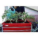 Mesa de cultivo huerto veggie rojo