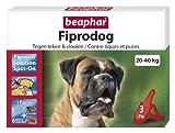 Beaphar Fiprodog - Pipetas contra pulgas y tizas para Perros Grandes, 20 – 40 kg en Fipronil 3 piquetas de 2,68 ml