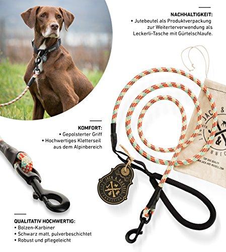 Jack & Russell Hundeleine Tajo aus hochwertigem Kletterseil mit Bolzenkarabiner Hunde Leine mit Soft-Grip Handschlaufe (Rot/Creme/Türkis)
