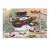 Tcerlcir Manteles Individuales Navidad muñeco de Nieve pájaros Rojos Juego de 6 manteles Individuales Antideslizantes Resistentes al Calor Lavables para la Cocina Homeation, 12x18in
