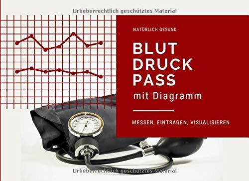 Blutdruckpass mit Diagramm: Blutdruck und Puls messen, eintragen, visualisieren (Blutdrucktagebuch im Querformat, Band 1)