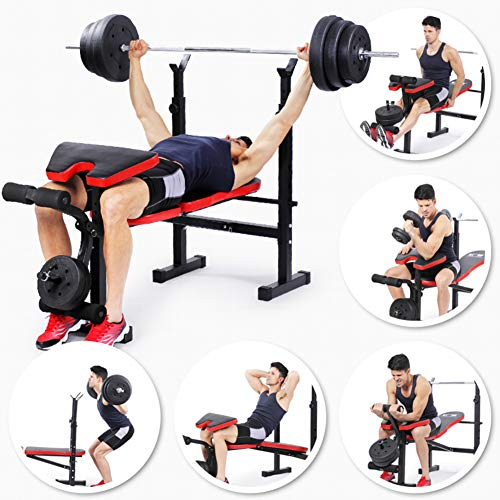 CCSU Professional Dumbbell Bench for Indoor Exercise,Multifunctional Foldable Strength Training Bench,Olympic Weight Benches for Full Body Workout A