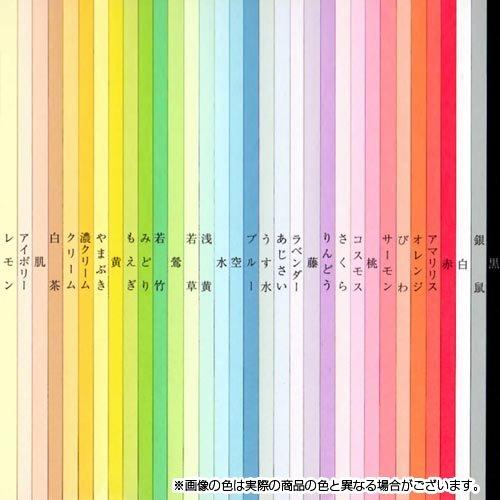 色模造紙中厚口 10枚 藤 130-552
