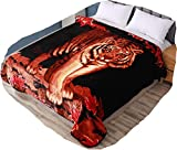 Hiyoko Tiger Throw Velvet 75' by 90' Blanket, Cloudy Dream Lovely Animal. Warm for Bed, Sofa, and Couch. Less Fuzz, Almost Lints-Free, No Shedding