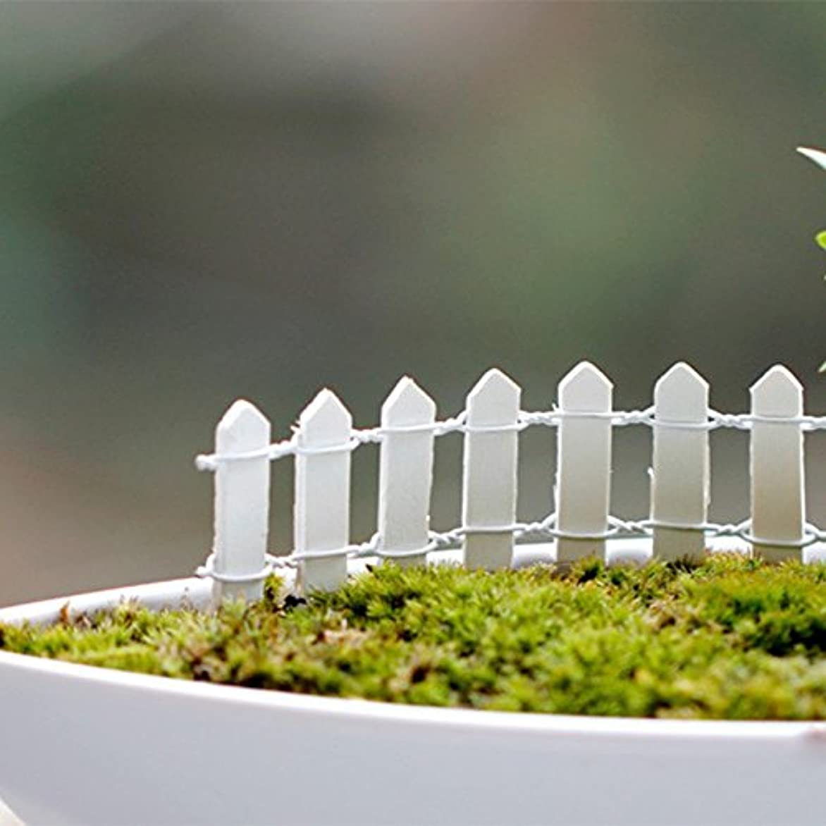 悪い通貨警告するJicorzo - 20個DIY木製の小さなフェンスモステラリウム植木鉢工芸ミニおもちゃフェアリーガーデンミニチュア[ホワイト]