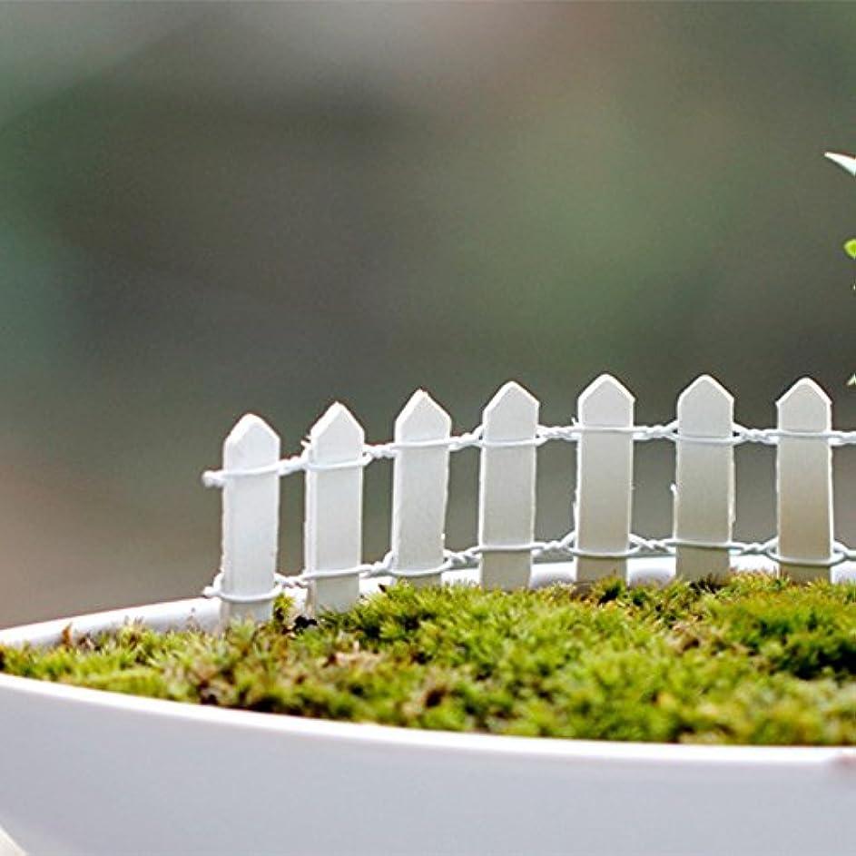皿錫転用Jicorzo - 20個DIY木製の小さなフェンスモステラリウム植木鉢工芸ミニおもちゃフェアリーガーデンミニチュア[ホワイト]