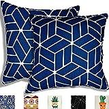TROOIA Juego de 2 fundas de almohada decorativas con cremallera oculta, diseño único en ambos lados, funda de cojín para sofá, cojín decorativo, decoración para salón, 45 x 45 cm (masa azul)