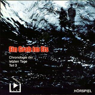 Ein Grab im Eis (Chronologie der letzten Tage 3) Titelbild