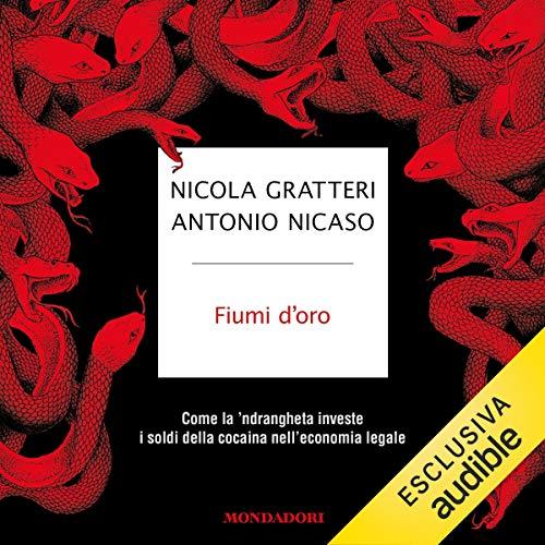 Fiumi d'oro audiobook cover art