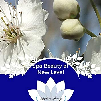 Spa Beauty At New Level