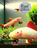 Albino Rainbow Shark: Aquarium Sponge Filter (English Edition)