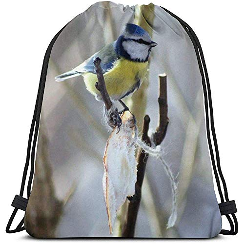 Blue Tanager Bird Flowers Seduta Borse a Tracolla con Coulisse Personalizzate Borsa da Palestra Zaino da Viaggio Palestra Leggera per Uomo Donna